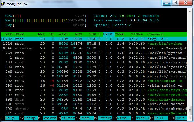 htop Linux
