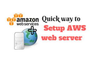 setup AWS web server