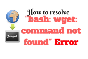 bash: wget: command not found